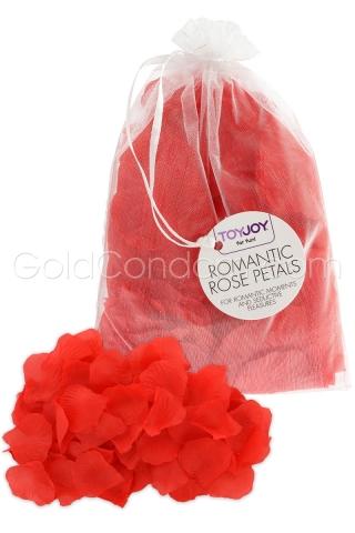 Pétales de rose romantique